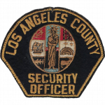 Los Angeles County Department of Health Services, CA