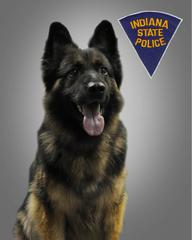 K9 Kilo | Indiana State Police, Indiana