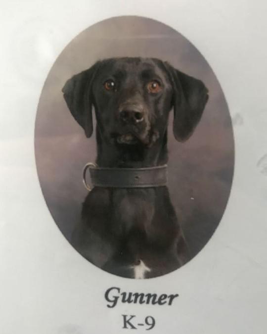 K9 Gunner | Southaven Police Department, Mississippi