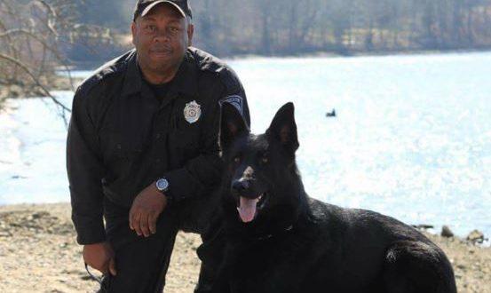 K9 Koda   Brockton Police Department, Massachusetts