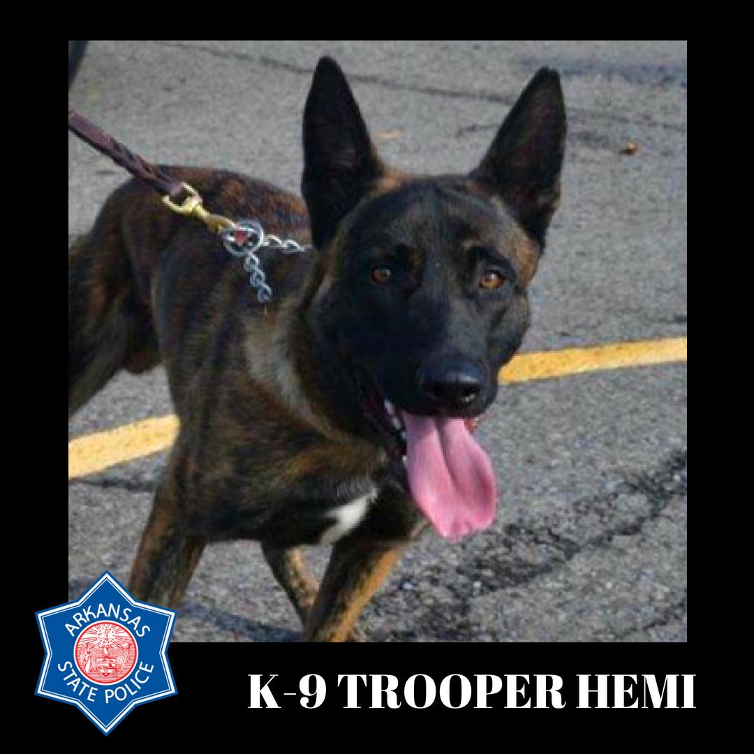 K9 Hemi | Arkansas State Police, Arkansas