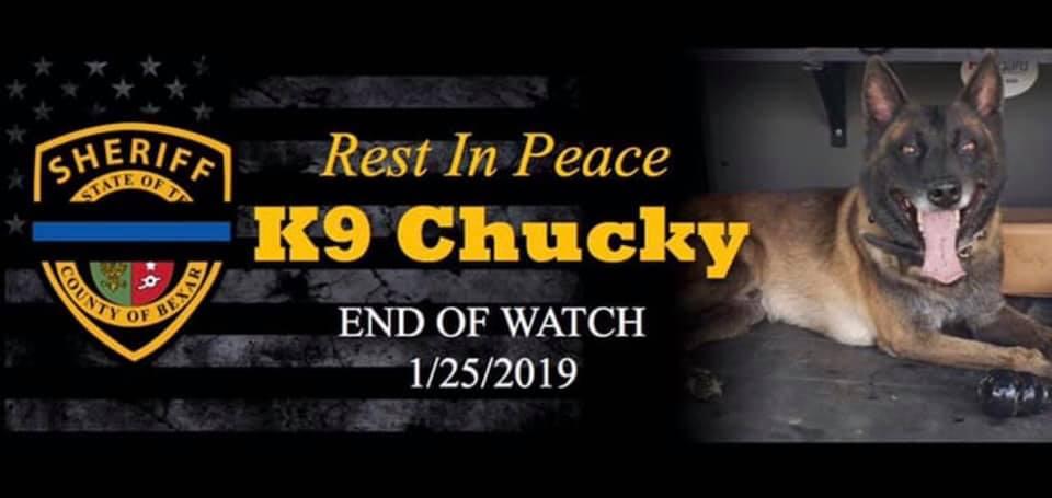 K9 Chucky | Bexar County Sheriff's Office, Texas