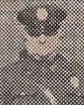 Patrolman John F. Podowski | Braddock Borough Police Department, Pennsylvania