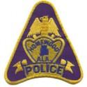 Homewood Police Department, Alabama
