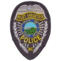 Pilot Mountain Police Department, North Carolina