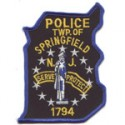 Springfield Police Department, New Jersey