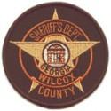Wilcox County Sheriff's Office, Georgia