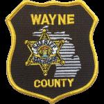 Wayne County Sheriff's Office, MI