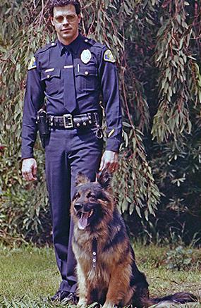 K9 Sonny | Ventura Police Department, California