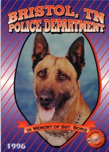 K9 Boris | Bristol Police Department, Tennessee