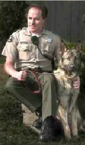K9 Urk | San Diego County Sheriff's Department, California