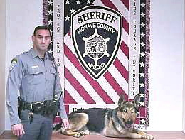K9 Rocky | Mohave County Sheriff's Office, Arizona