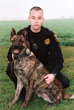 K9 Niko | San Joaquin County Sheriff's Office, California