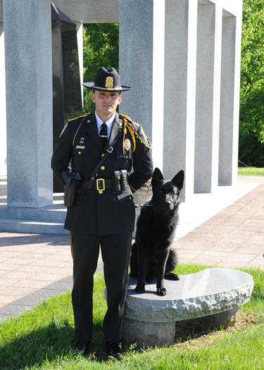 K9 Major | Orange Police Department, Connecticut