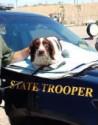 K9 Robbie | Wyoming Highway Patrol, Wyoming