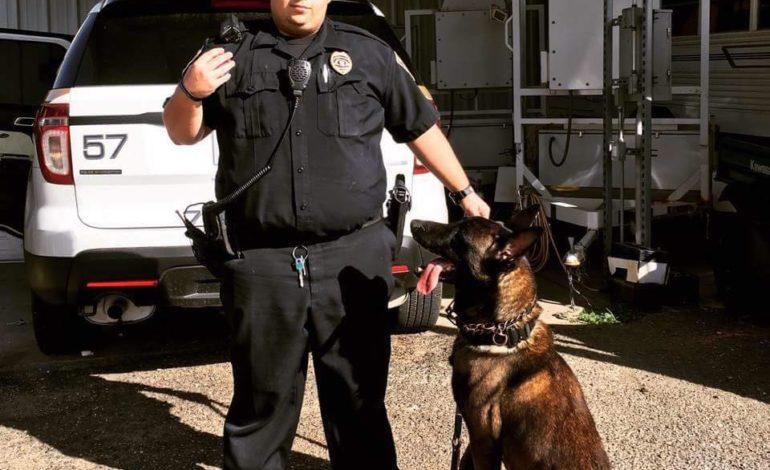 K9 Roscoe | Crowley Police Department, Louisiana