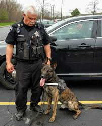 K9 Drago | Forest Preserves of Cook County Department of Law Enforcement, Illinois