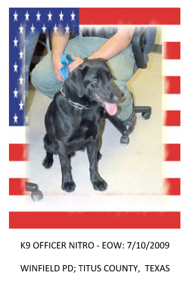 K9 Nitro | Winfield Police Department, Texas