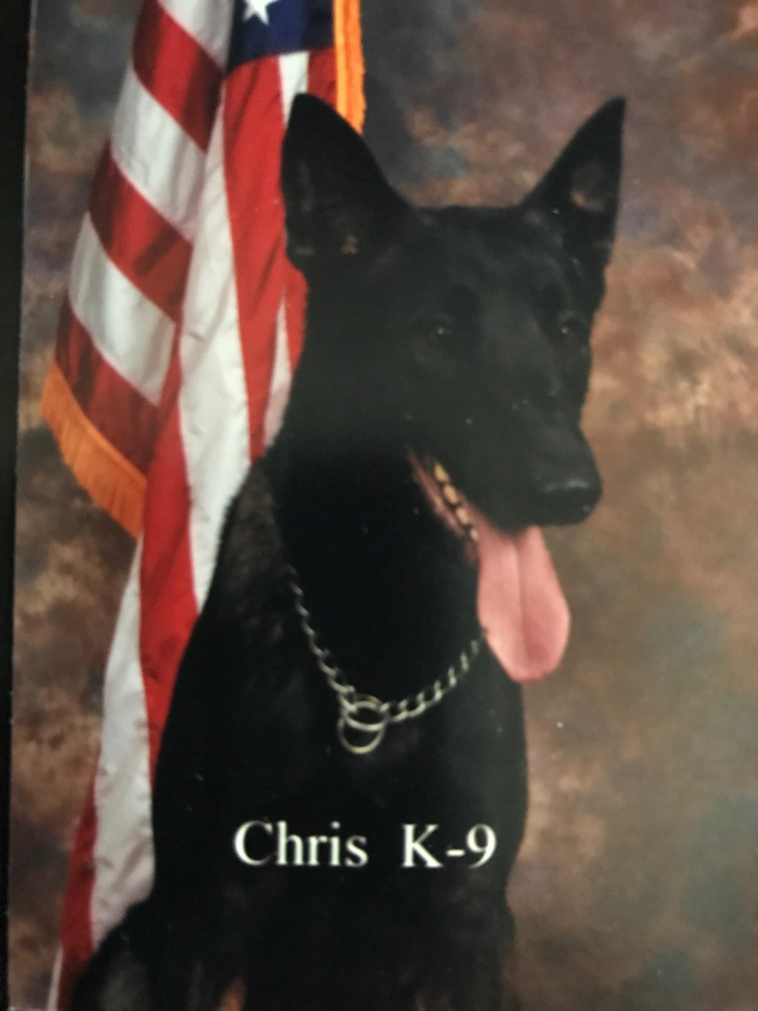 K9 Chris | Yancey County Sheriff's Office, North Carolina