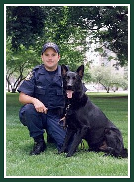 K9 Chili | Lansing Police Department, Michigan