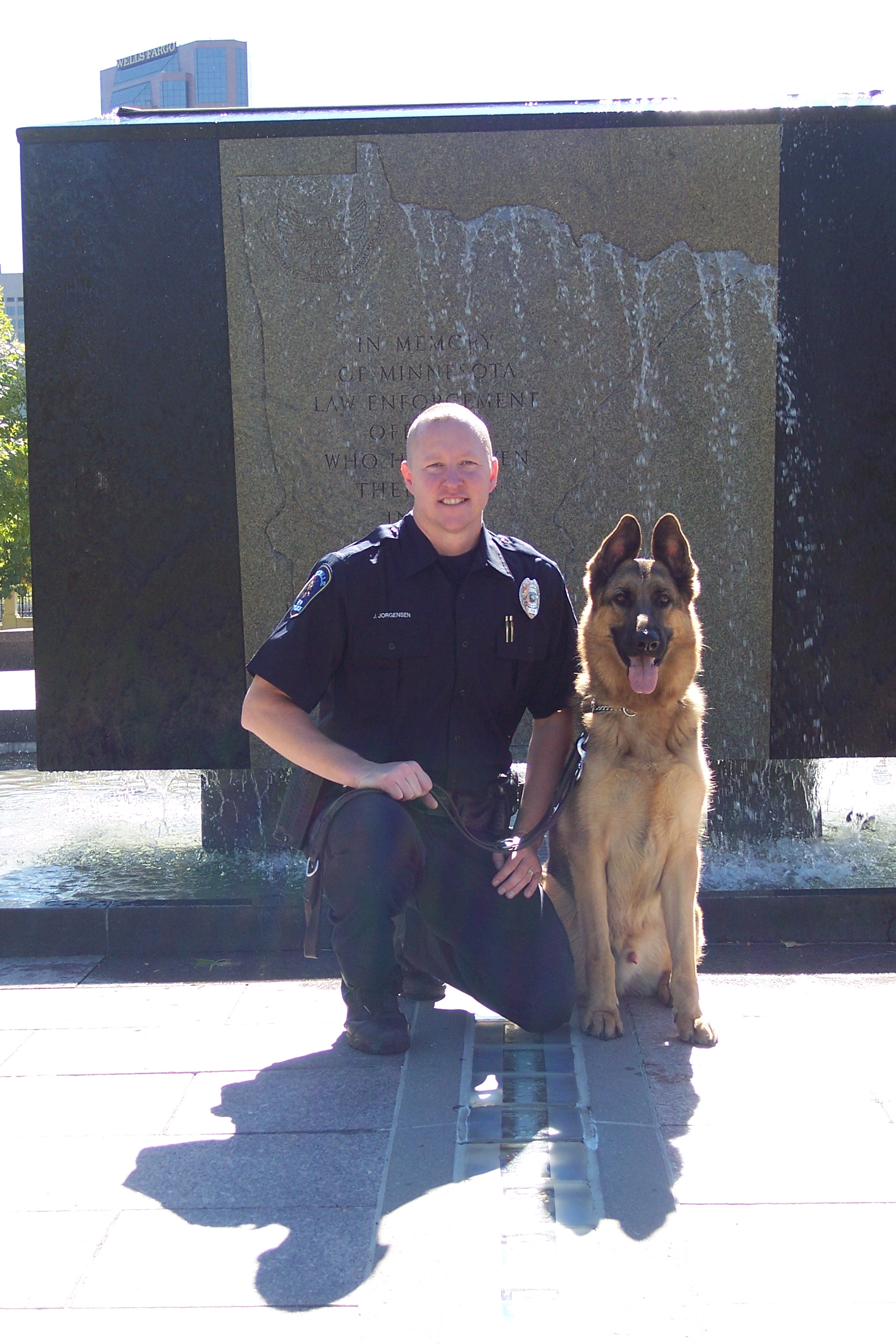 K9 Major | Roseville Police Department, Minnesota