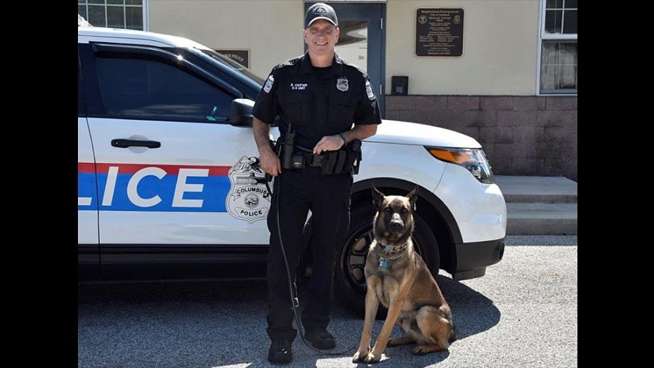 K9 Benzi | Columbus Division of Police, Ohio