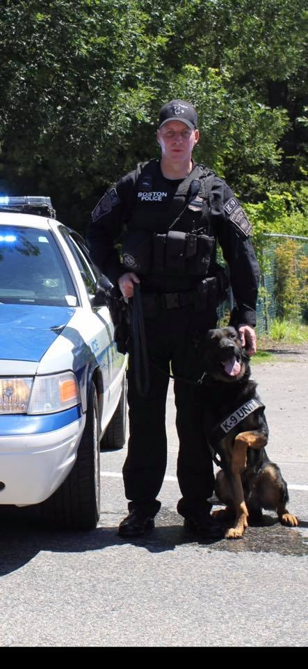 K9 Rush | Boston Police Department, Massachusetts