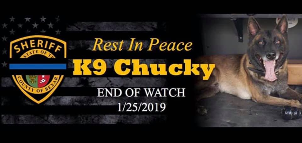 K9 Chucky | Bexar County Sheriff's Office, Texas