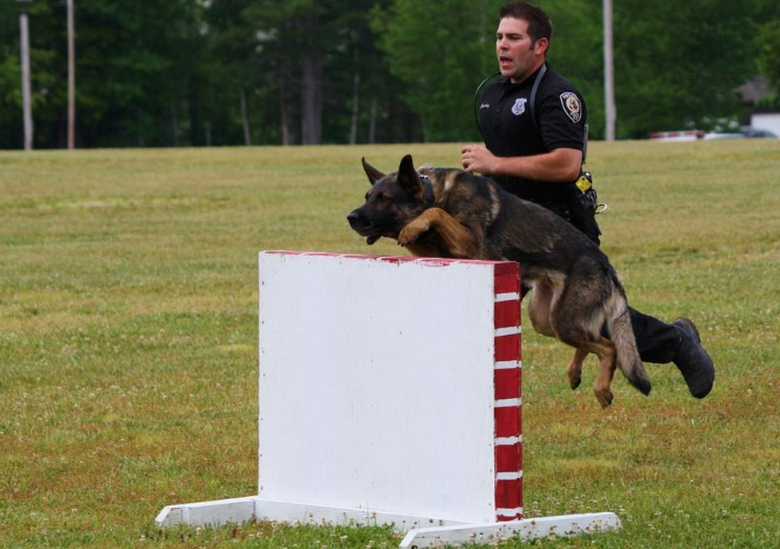 K9 Max | Portsmouth Police Department, New Hampshire