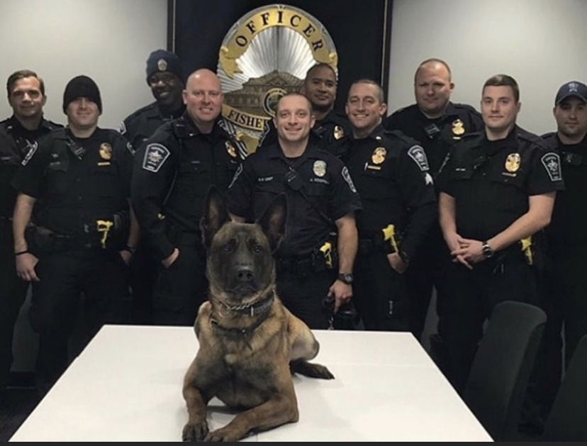 K9 Harlej | Fishers Police Department, Indiana