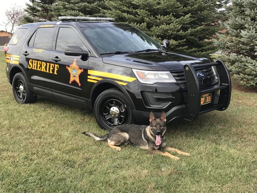 K9 Cane | Logan County Sheriff's Office, Ohio
