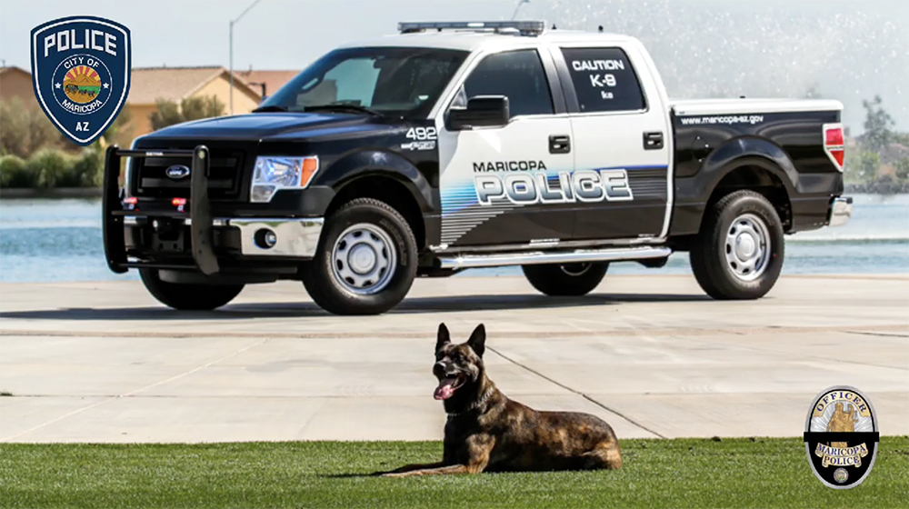 K9 Ike | Maricopa Police Department, Arizona