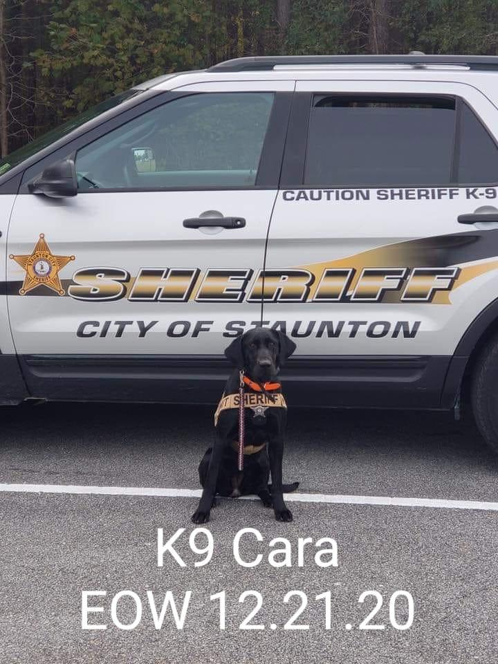 K9 Cara | Staunton Sheriff's Office, Virginia