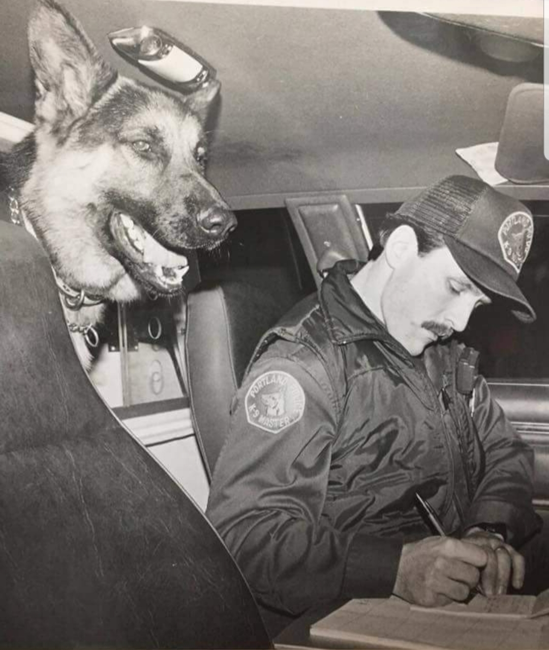 K9 Argos | Portland Police Bureau, Oregon