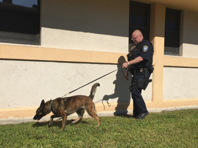 K9 Lyka Lukas | United States Department of Homeland Security - Federal Protective Service, U.S. Government