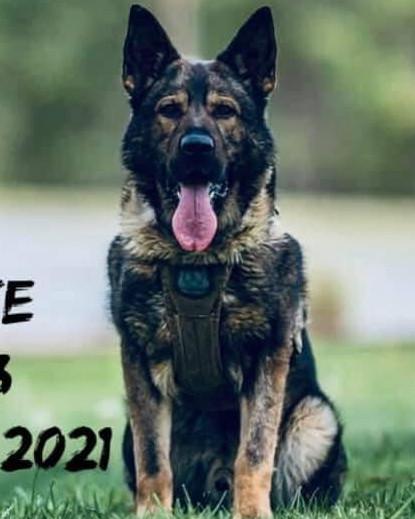K9 Duke | Virginia State Police, Virginia