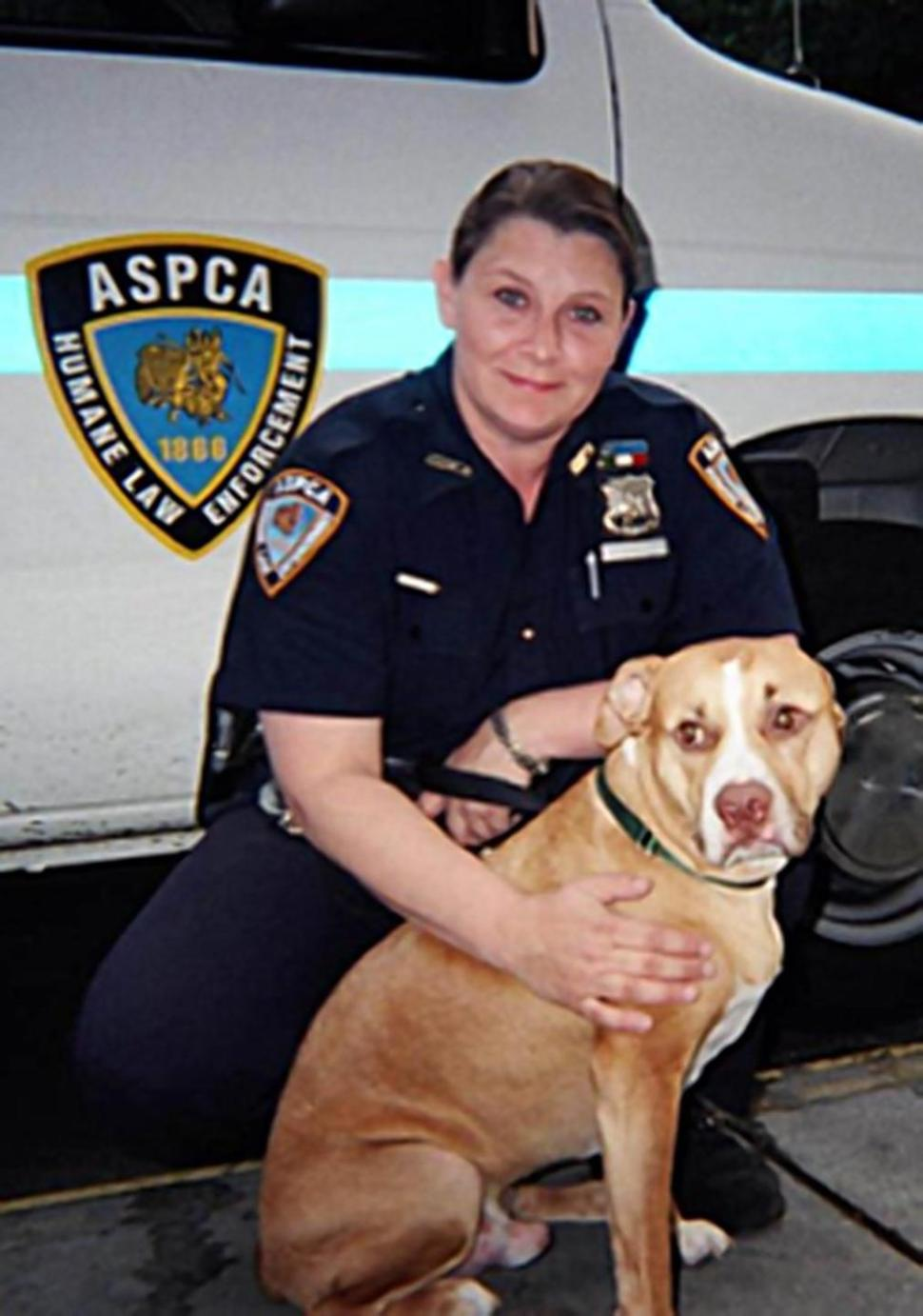 Special Investigator Diane DiGiacomo | American Society for the Prevention of Cruelty to Animals Humane Law Enforcement, New York