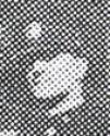 Patrolman Thomas E. Dameron | Cincinnati Police Department, Ohio