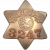 Chicago and Western Indiana Railroad Police Department, Railroad Police
